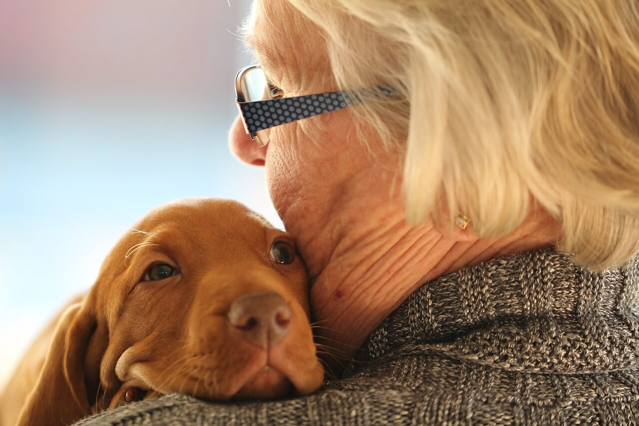 Animal welfare – Knowing is caring