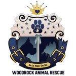 Donate Dog Food To Woodrock Animal Rescue-0